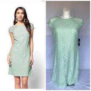 NY & Company NWT Laced Mint Green Dress